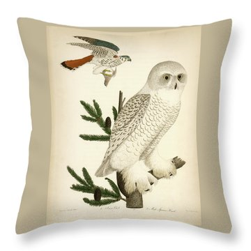 1. Snow Owl. 2. Male Sparrow-hawk. Throw Pillow