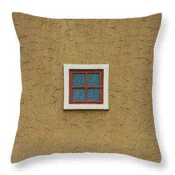 Texas Windows 3 Throw Pillow
