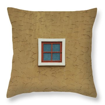 Texas Windows 3 Throw Pillow