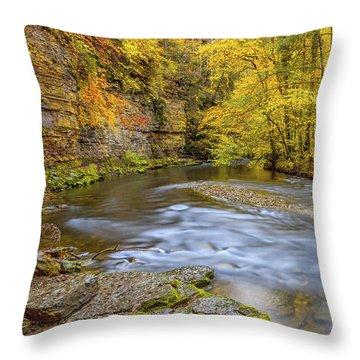 The Wutach Gorge Throw Pillow