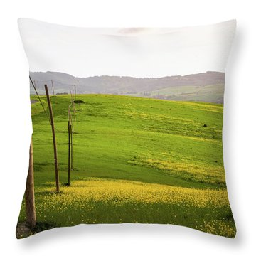 Tuscan Landscapes. Hills In The Spring Throw Pillow