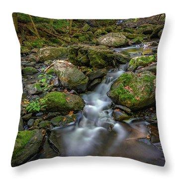 Throw Pillow featuring the photograph Vaughan Brook by Rick Berk