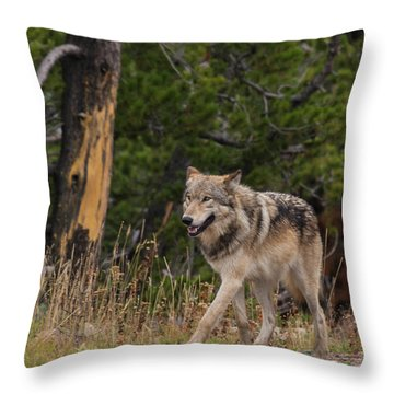 W1 Throw Pillow
