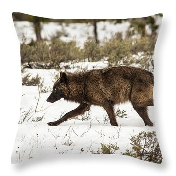 W10 Throw Pillow