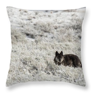 W18 Throw Pillow