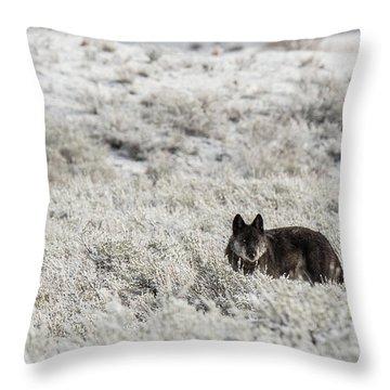 W18 Throw Pillow