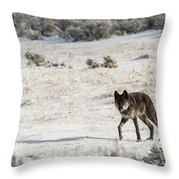 W19 Throw Pillow