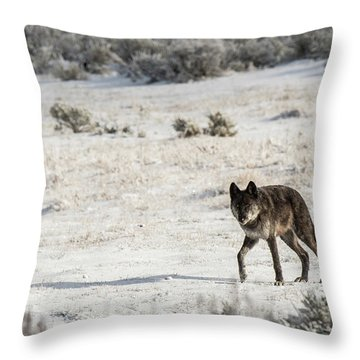 W19 Throw Pillow