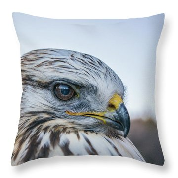 Throw Pillow featuring the photograph B2 by Joshua Able's Wildlife