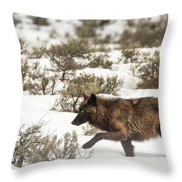 W3 Throw Pillow