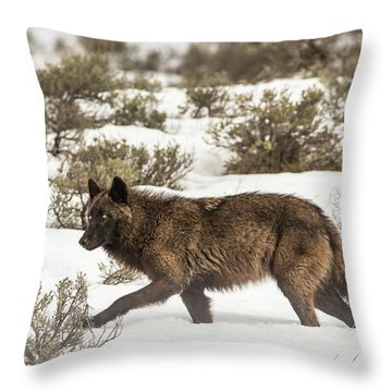 W4 Throw Pillow