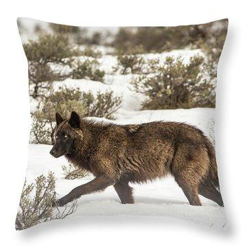 W4 Throw Pillow
