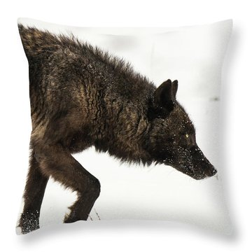 W46 Throw Pillow