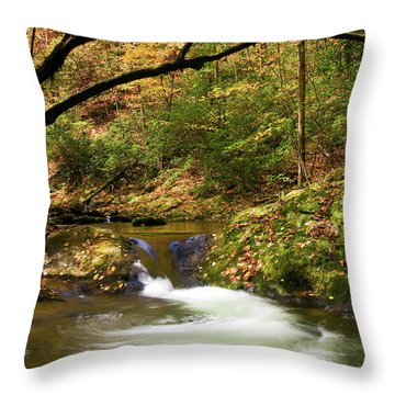 Water Swirl Throw Pillow