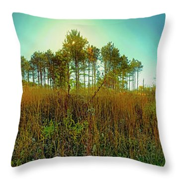 Throw Pillow featuring the photograph Which Way To Go  by Tom Jelen