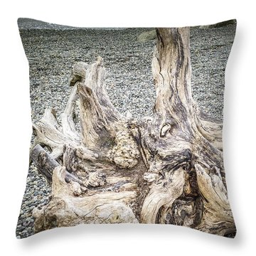 Throw Pillow featuring the photograph Wood Log In Nature No.35 by Juan Contreras