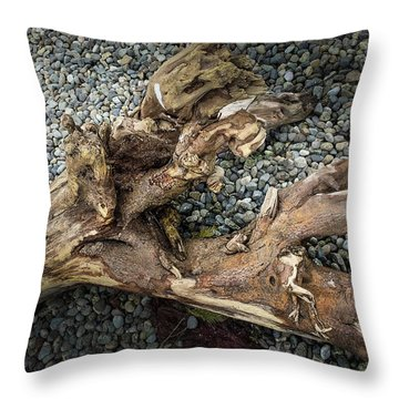 Throw Pillow featuring the photograph Wood Log In Nature No.39 by Juan Contreras