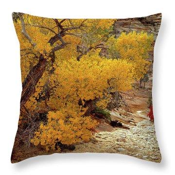 Zion National Park Autumn Throw Pillow
