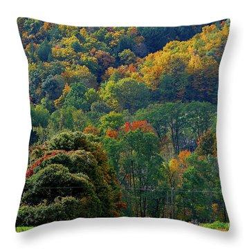 10-12-2009img2941a Throw Pillow