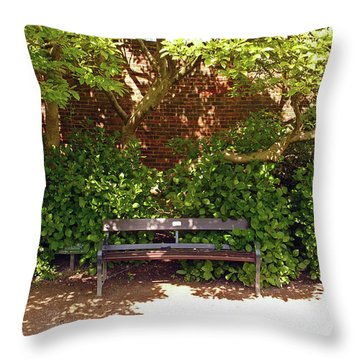 11/05/19 Chorley. Astley Hall. Walled Garden. Sunlit Bench. Throw Pillow