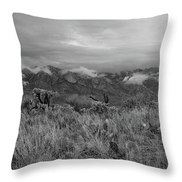 12-26-18 Snow Storm Throw Pillow