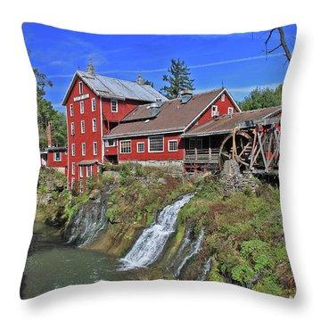 19th Century Treasure Throw Pillow