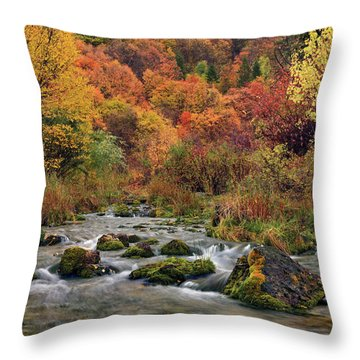 Cub River Autumn Throw Pillow