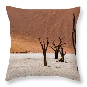 Deadvlei Desert Throw Pillow