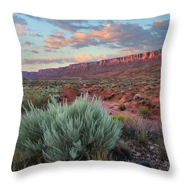 Desert And Cliffs, Vermilion Cliffs Nm Throw Pillow
