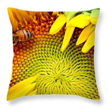 Throw Pillow featuring the photograph Peek-a-boo by Candice Trimble