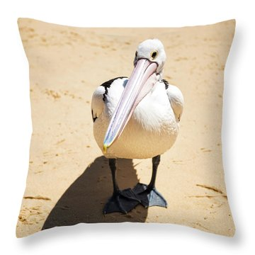 Throw Pillow featuring the photograph Pelican During The Day by Rob D Imagery