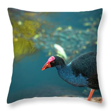 Throw Pillow featuring the photograph Purple Swamphen by Rob D Imagery