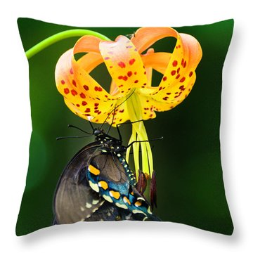 Swallowtail On Turks Cap Throw Pillow