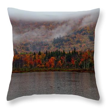 The Basin In Maine Throw Pillow