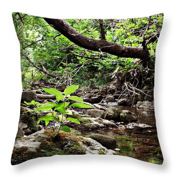 The Bluesy Bubbling Brook Throw Pillow