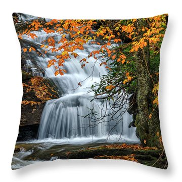 Waterfall And Fall Color Throw Pillow