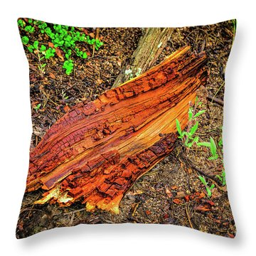 Throw Pillow featuring the photograph Wet Wood by Jon Burch Photography