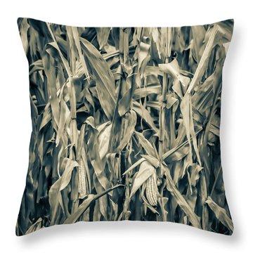 2018 Corn Throw Pillow