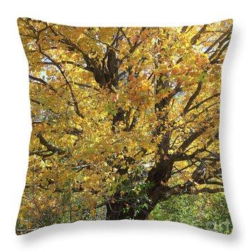 2018 Edna's Tree Up Close Throw Pillow