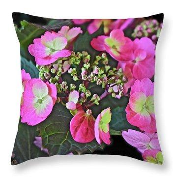 2019 June At The Gardens Tuff Stuff Hydrangea Throw Pillow