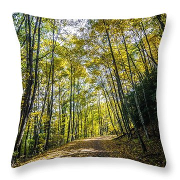 Throw Pillow featuring the photograph Scenic Views Along Virginia Creeper Trail by Alex Grichenko