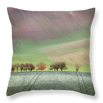 Autumn In South Moravia 3 Throw Pillow