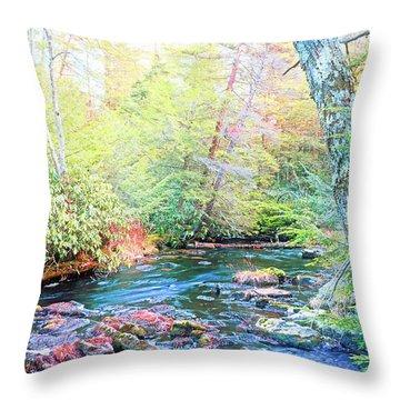 Pocono Mountain Stream, Pennsylvania Throw Pillow