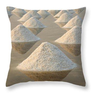 Salt Pond Throw Pillows