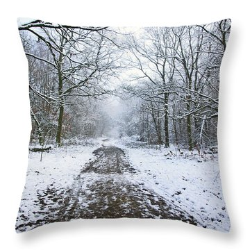 30/01/19  Rivington. Lower Barn. Arboretum Path. Throw Pillow