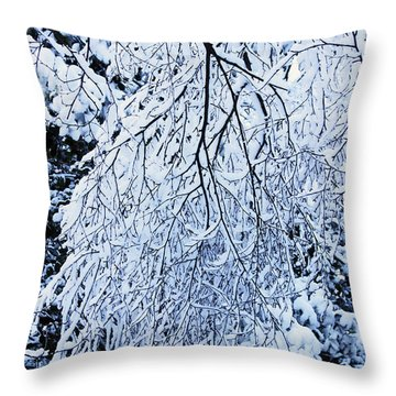 30/01/19  Rivington. Snow Covered Branches. Throw Pillow