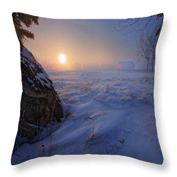 -30 Celsius Throw Pillow