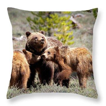 399 And Cubs Throw Pillow