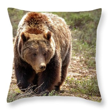 399 Throw Pillow