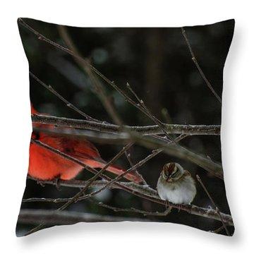 3cardinals And A Sparrow Throw Pillow